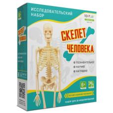 """Исследовательский набор """"Скелет человека"""""""