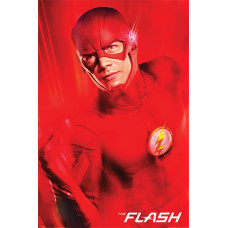 Постер The Flash - New Destinies (61x91.5 см)