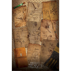 Постер Fantastic Beasts - Notebook Pages (61x91.5 см)