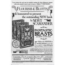 Постер Fantastic Beasts: The Crimes of Grindelwald - Flourish And Blotts (61x91.5 см)