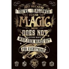 Постер Harry Potter - Magic (61x91.5 см)
