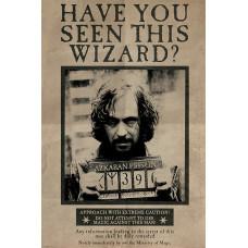 Постер Harry Potter - Wanted Sirius Black (61x91.5 см)