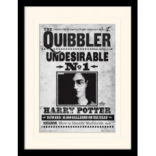 Принт в рамке Harry Potter - The Quibbler (30x40 см)