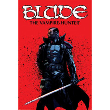 Постер Blade - The Vampire Hunter (61x91.5 см)