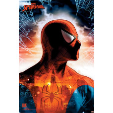 Постер Spider-Man - Protector Of The City (61x91.5 см)