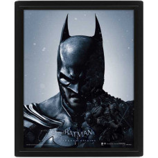 Линзовидный 3D постер Batman: Arkham Origins - Batman/Joker (20x25 см)
