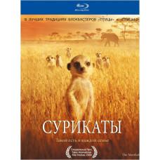 Сурикаты [Blu-ray]