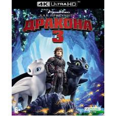 Как приручить дракона 3 (+карточки/тетрадь) [4K UHD Blu-ray]