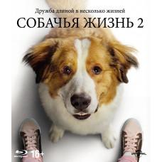 Собачья жизнь 2 [Blu-ray]