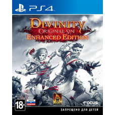Divinity: Original Sin. Enhanced Edition [PS4, русские субтитры]