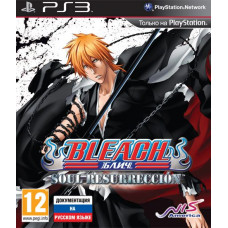 Bleach: Soul Resurreccion [PS3, русская документация]