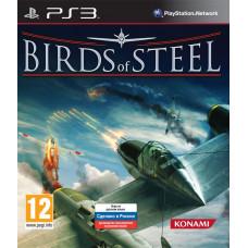 Birds of Steel [PS3, русская версия]