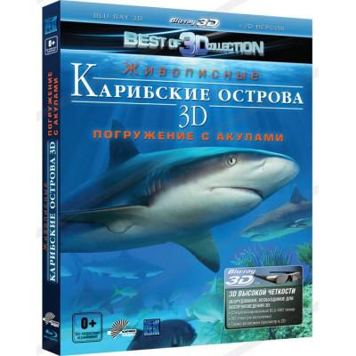 Карибские острова 3D: Погружение с акулами [3D Blu-ray + 2D Blu-ray]