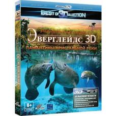 Эверглейдс: ламантин кристальной реки [3D Blu-ray + 2D Blu-ray]