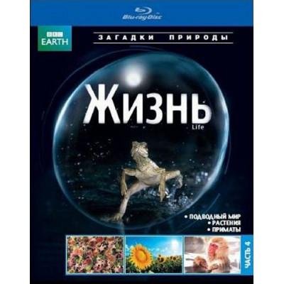ВВС: Жизнь (Часть 4) [Blu-ray]