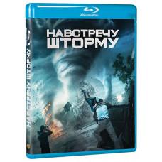 Навстречу шторму (2014) [Blu-ray]